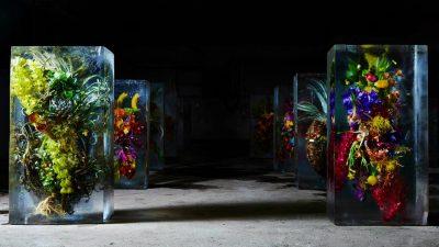 Iced Flowers by Azuma Makoto!