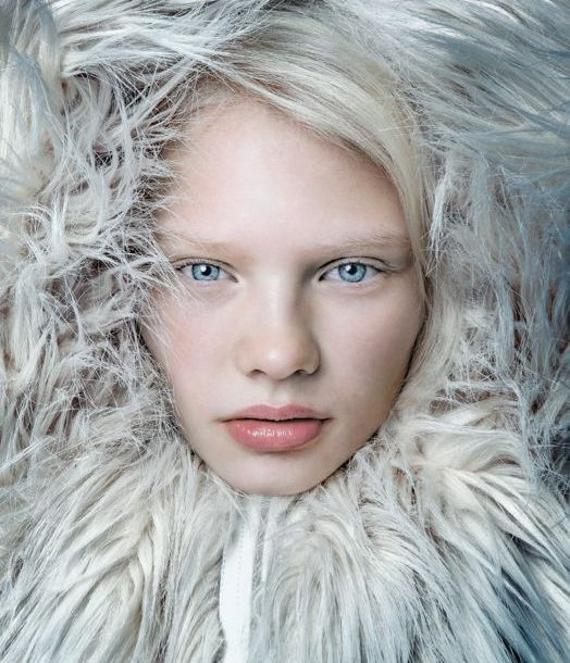 Faux Fur – Have a n-ice Day!