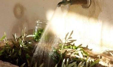 Πράσινο σαπούνι – Η Σταθερή αξία!