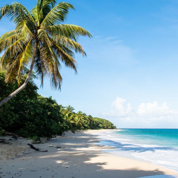 Guadaloupe – Η πεταλούδα της Καραϊβικής!