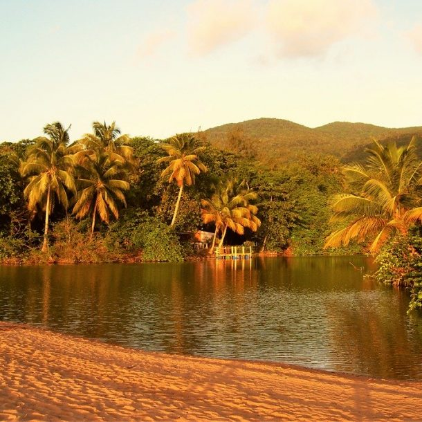 Guadaloupe – Η πεταλούδα της Καραϊβικης!