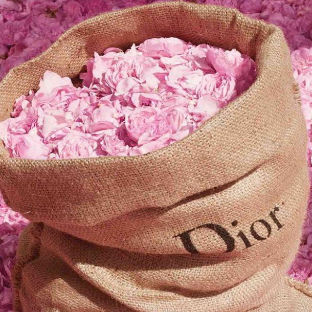 """""""Miss Dior Rose N' Roses"""" – Το όνομα του Ρόδου!"""